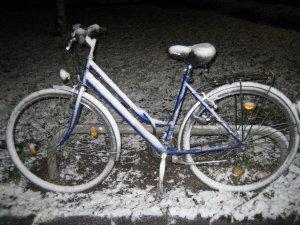 Tiempo de nieves